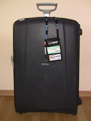 20081102_PDC_Suitcase
